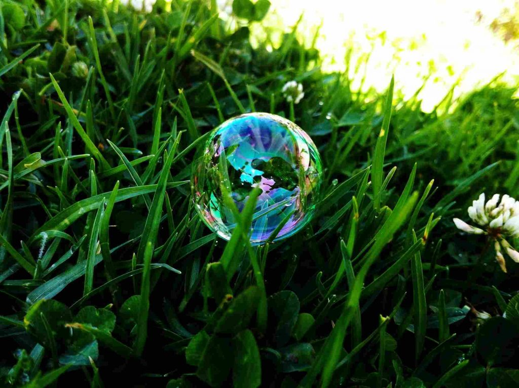 Lawn Bubbles Under Grass: Know All About Benefits, Removal Of Lawn Blisters