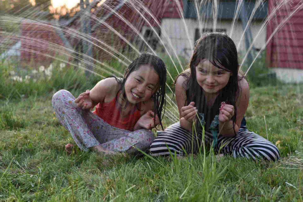 Lawn Bubbles Under Grass: Know All About Benefits, Removal Of Lawn Blisters 2